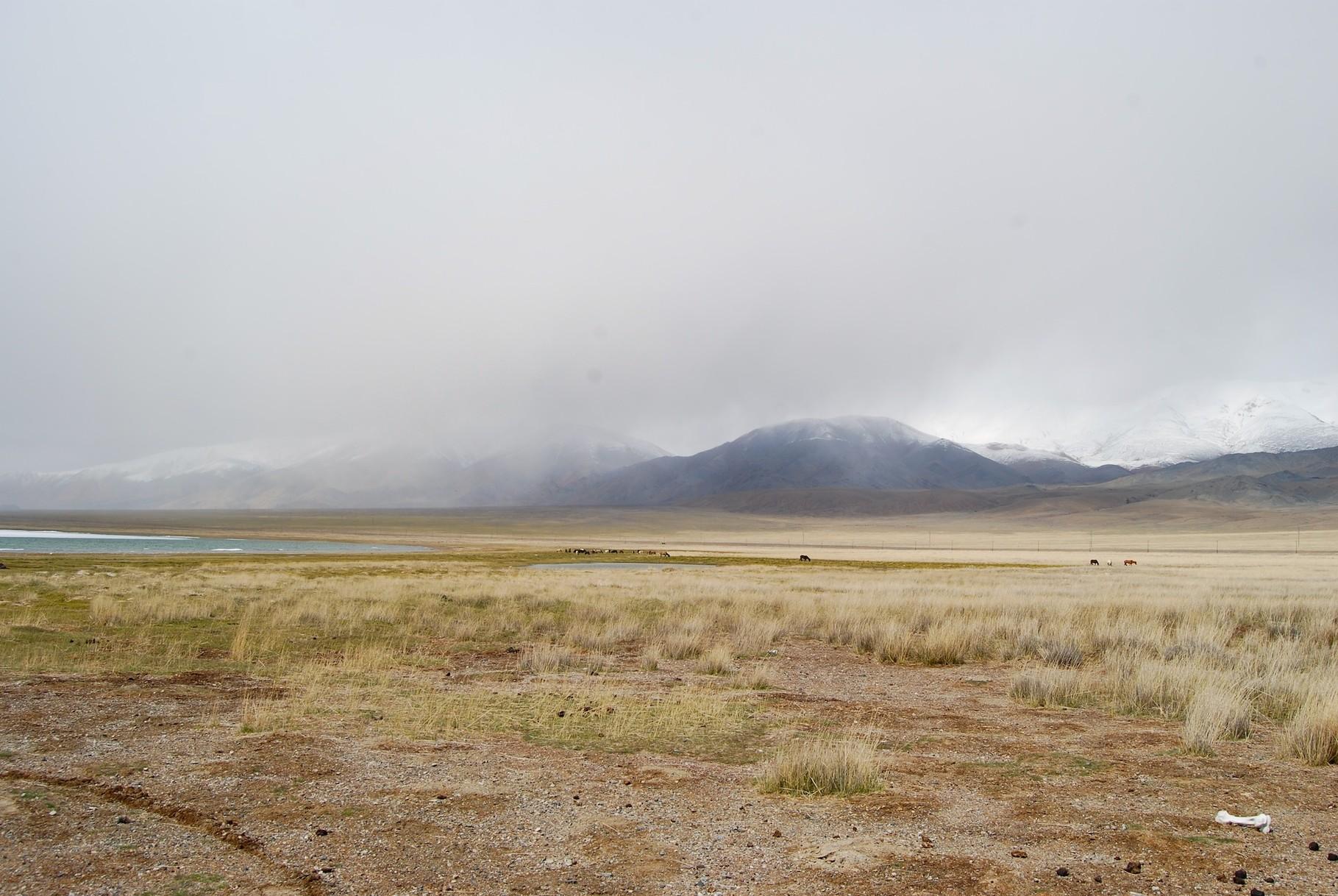 Tolbo Nuur