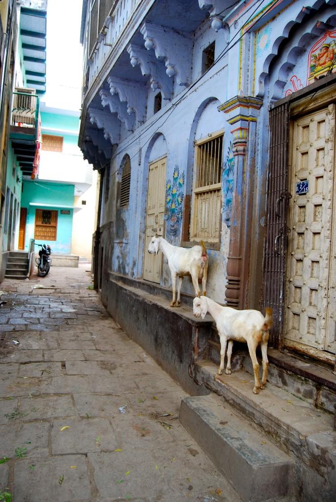 Straßen in Varanasi