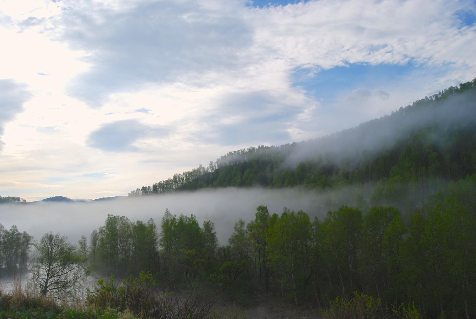 Nebelfelder am Morgen
