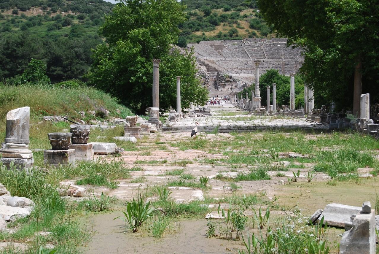 Ephesos Gymnasion