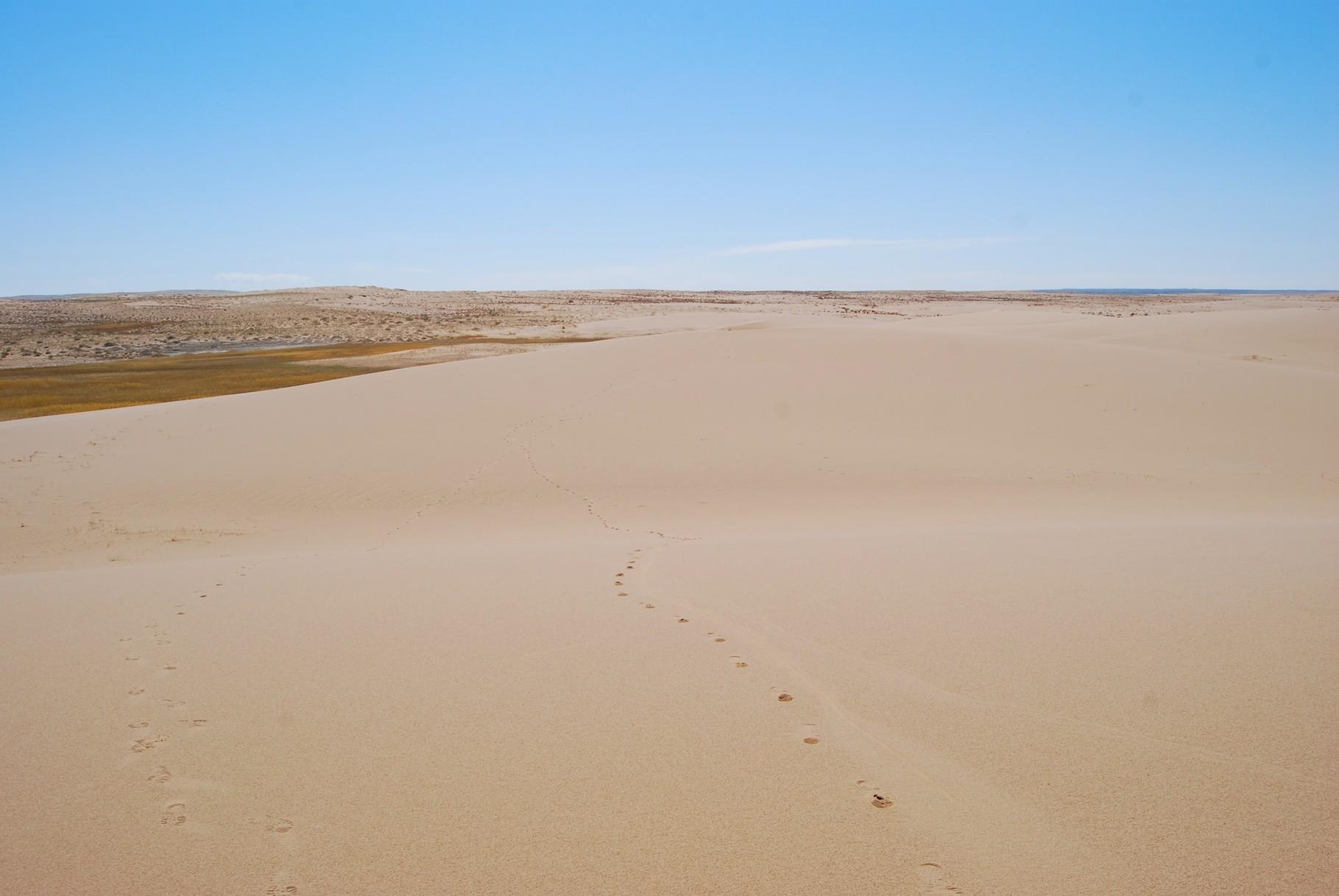 ...bei diesen meterhohen Dünen