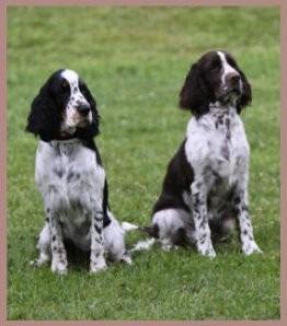 Die beiden Geschwister: Josephine & Trudi