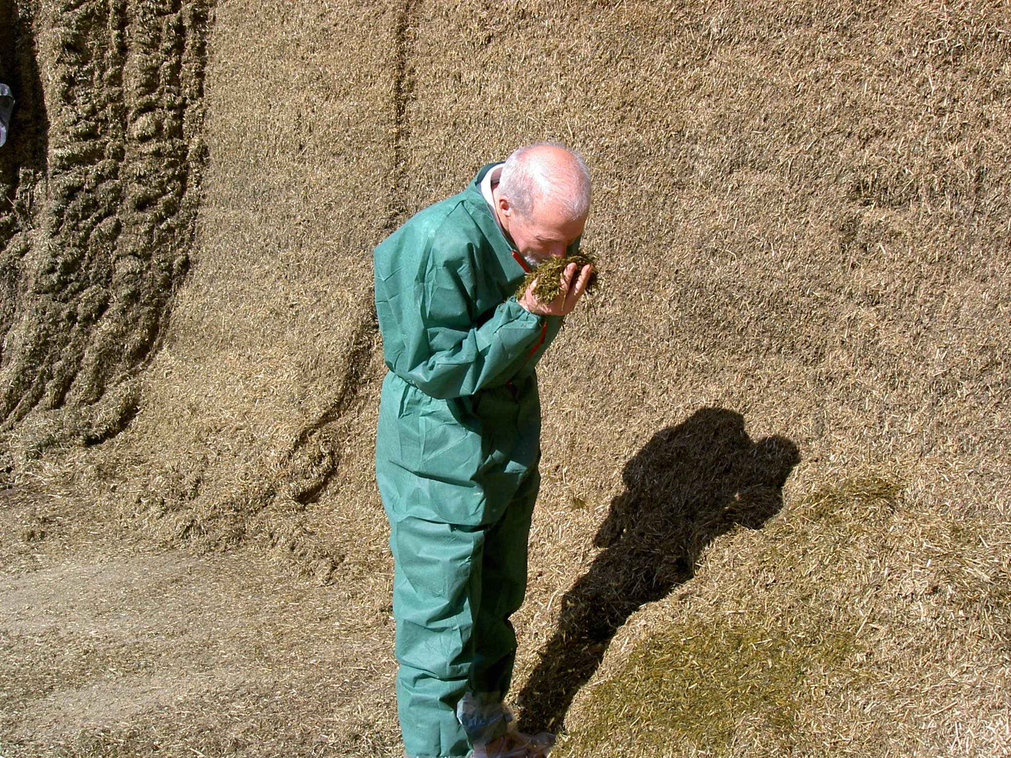Silages treated with KE-agrar have a pleasant aroma.