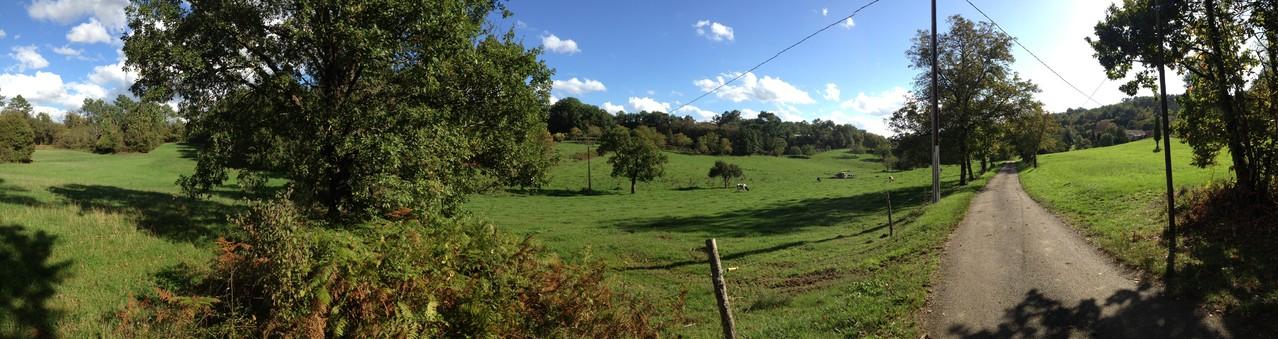 Maar ook tussen de weilanden is het in de herfst prachtig wandelen.