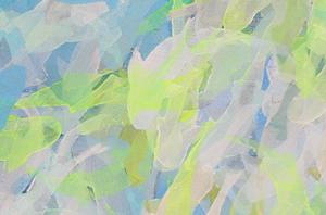 """schwarm"" / Detail / 2015 / Carla Graupe"