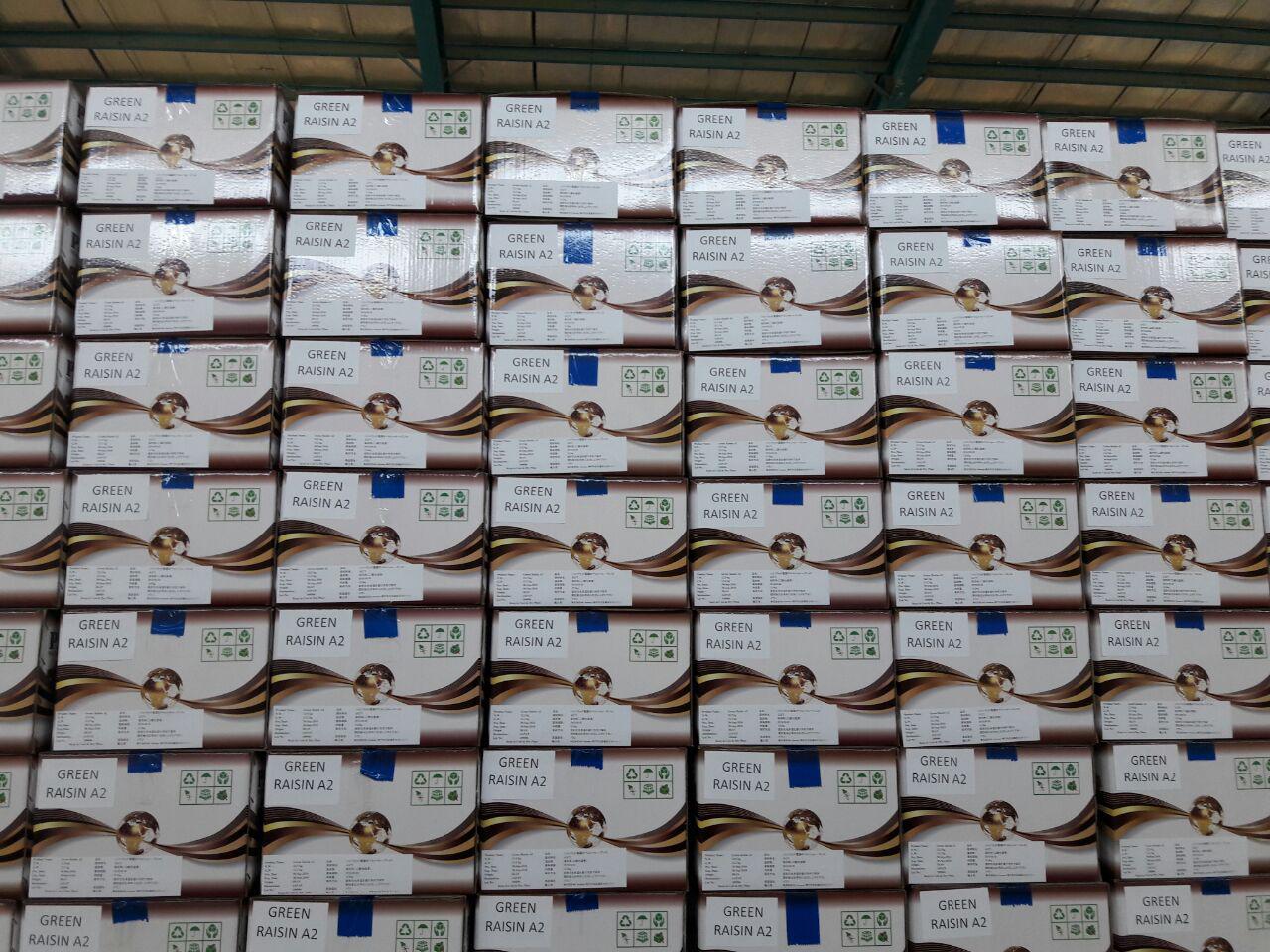 Final Pariz Nuts Packaging