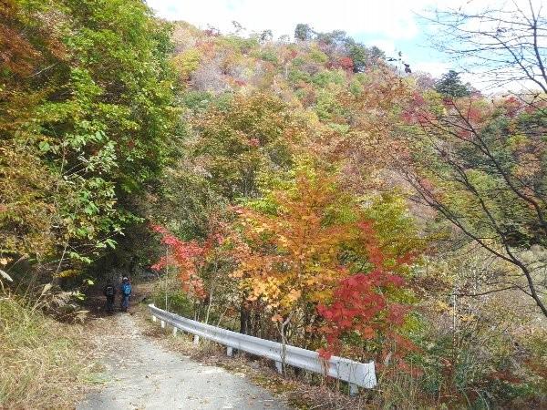 10月末、丁度良い紅葉を迎えていました。
