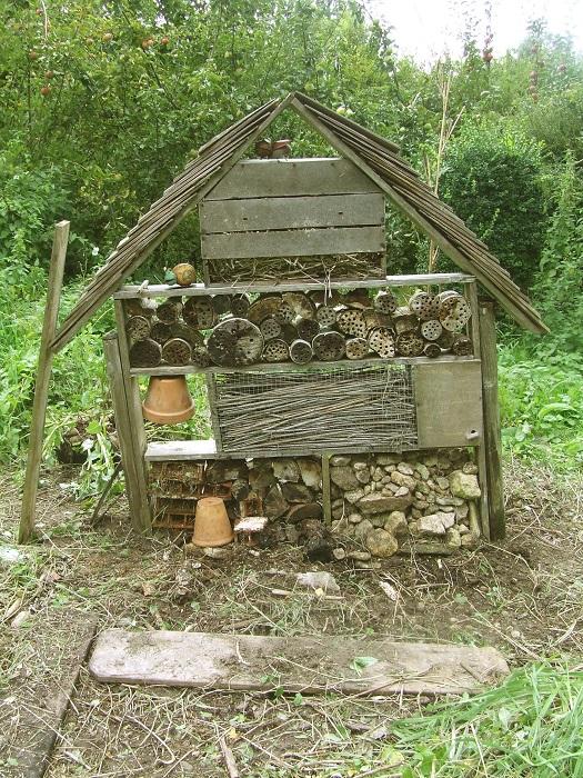 Remise en place de l'abri à insectes  qu'un acte de vandalisme avait couché en août.