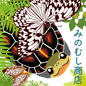 http://hakubutufesshoukai.blog.fc2.com/blog-entry-1628.html