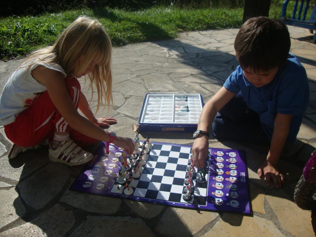 DBZ et les échecs !