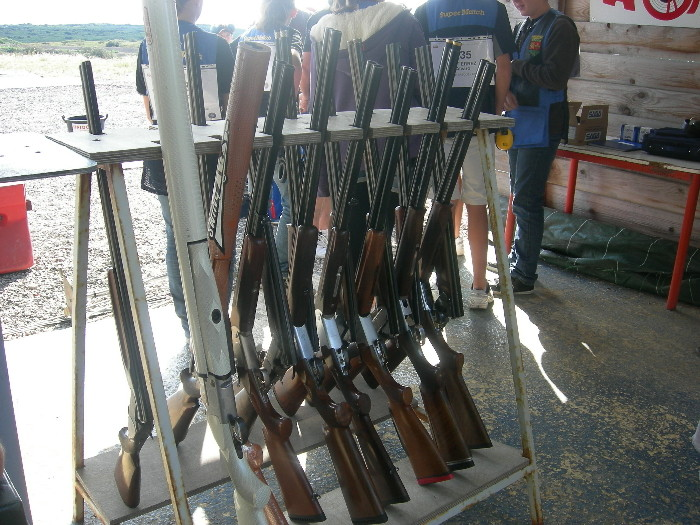 Le Ratelier à fusils