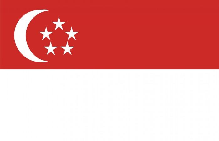 Ficha país Singapur Sector Porcino