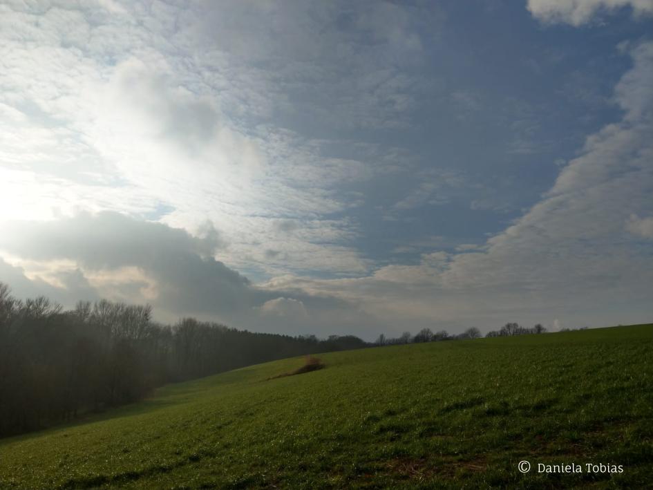 Landschaft am Hang Südlich der Häuser, Januar 2021
