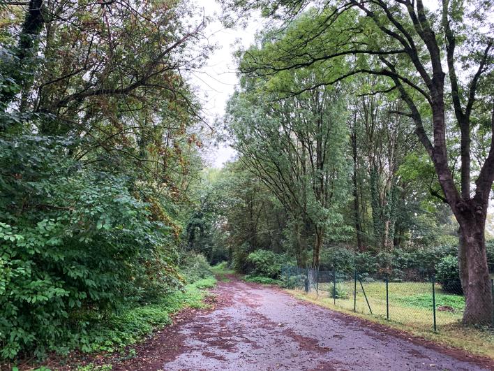 Der Weg nach Unterhöscheid über den Künstlergarten, September 2020