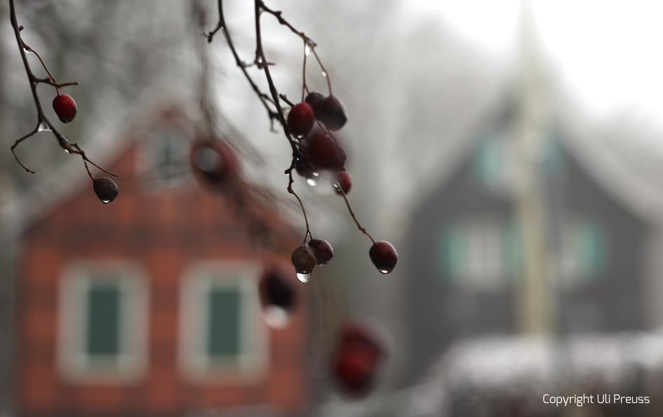 "Impressionen des ""Schwarzen Hauses"" – Januar 2021"