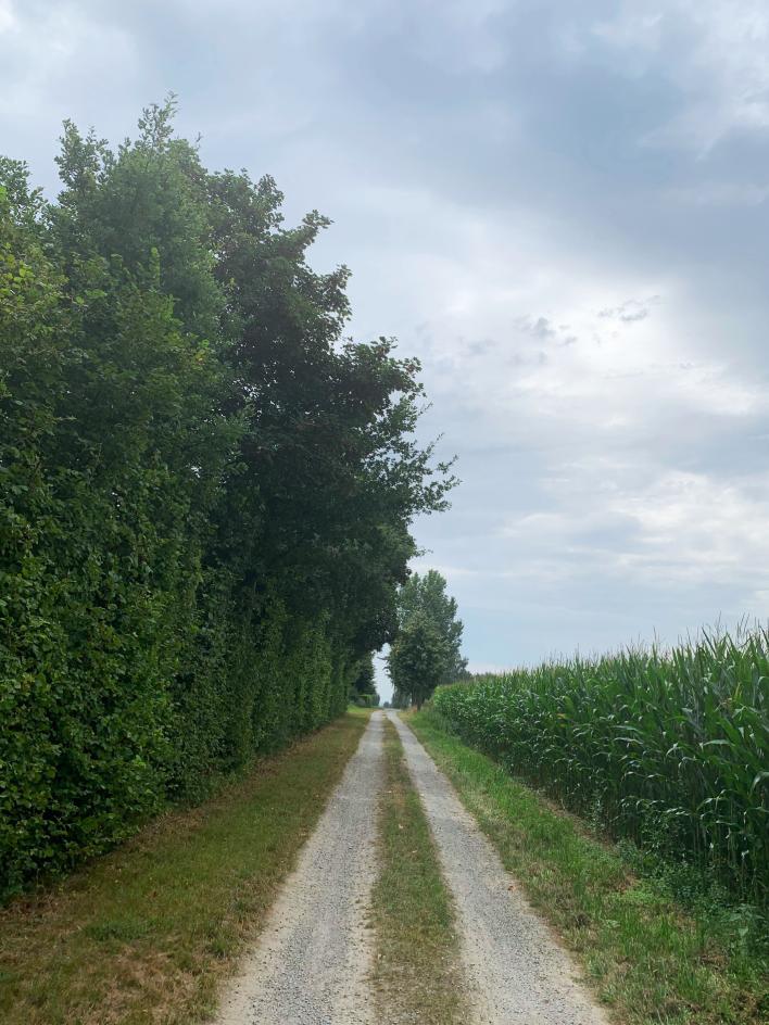 Ansichten der Ländereien um Haus Ahse