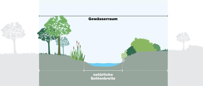 Berechnung der Gewässerraumbreite anhand der natürlichen Sohlenbreite