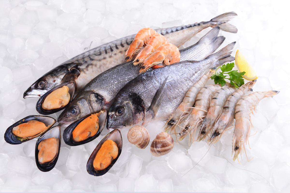 Unser Fisch wird fangfrisch tiefgekühlt und garantiert somit höchste Qualität.