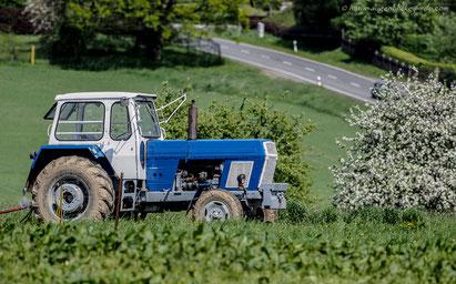 East German Traktor, Buldog, Trecker