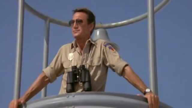 Roy Scheider in Jaws 2