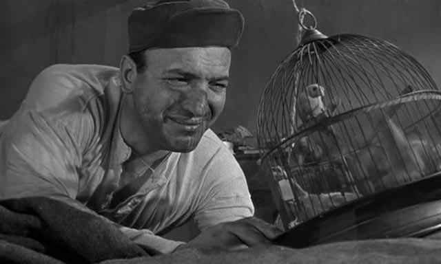 Telly Savalas in Birdman Of Alcatraz