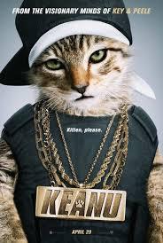Kitten, please
