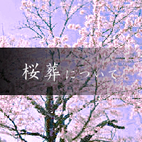樹木葬の寺 天徳寺 桜葬について