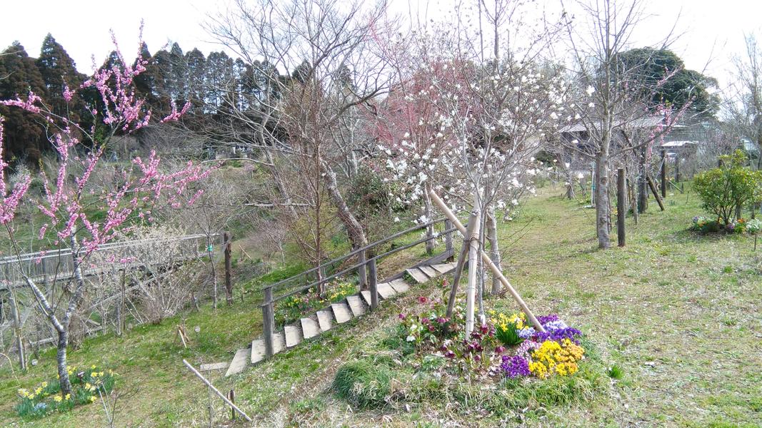訪れる方も多く、足元も沢山の花が植えられています。第二樹木葬地