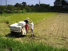 お米をご購入頂くことは、この地域の活性化と環境保護を支えて頂く力になります。