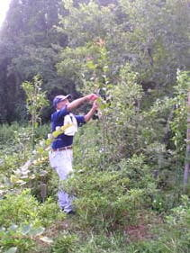 樹木葬事業が地元の雇用を生みます。