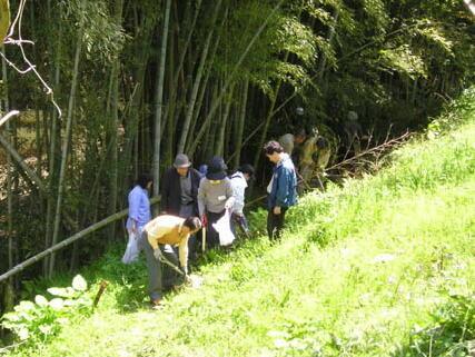 竹の子掘りは始めての方がほとんど。