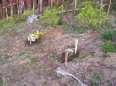 木札は古くなった時、要望があれば新しいものに交換されます。