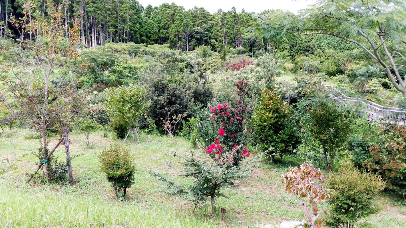 第二樹木葬地