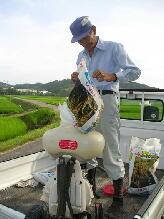 農協で買った有機肥料。