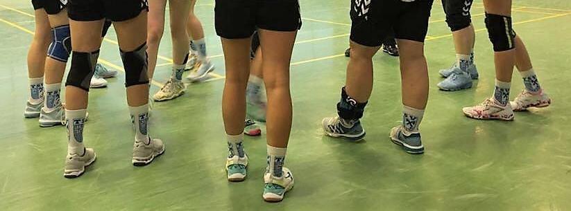 Bild von der TSV Morsum 1. Damen Handball Mannschaft in Vereinsbekleidung