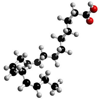 modello spaziale molecola omega 3