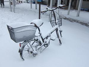 少しの時間で隊長の自転車も雪に埋もれています