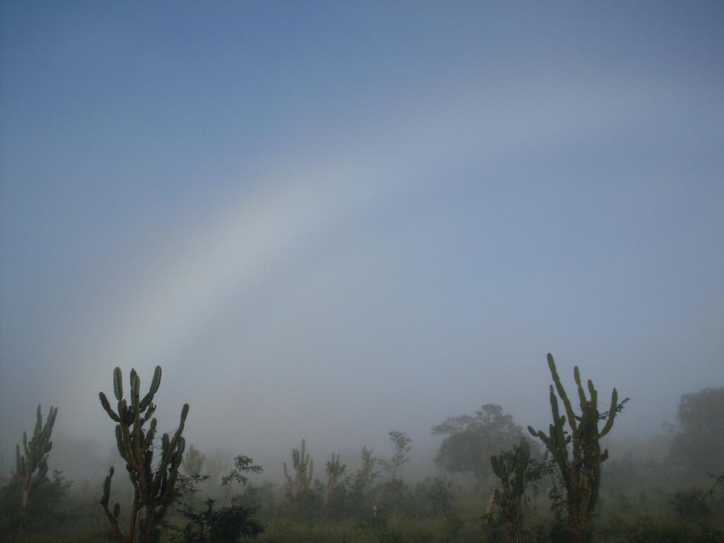 Arco-íris branco visto em 05/01/2008. Foto de Jorge L.N.