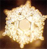 Ein Wasserkristall der mit Liebe und Dankbarkeit informiert wurde