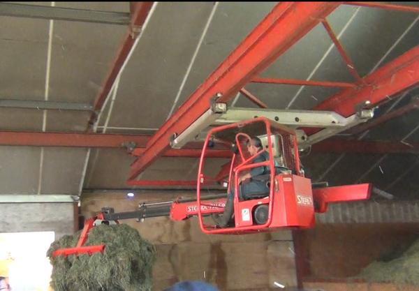 Le matériel autrichien en suspension permet de distribuer facilement et rapidement le fourrage dans toute la bergerie.