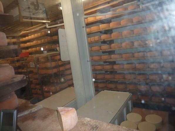 Derriere la baie vitrée le saloir permet l'affinage des tommes de fromage de vache.