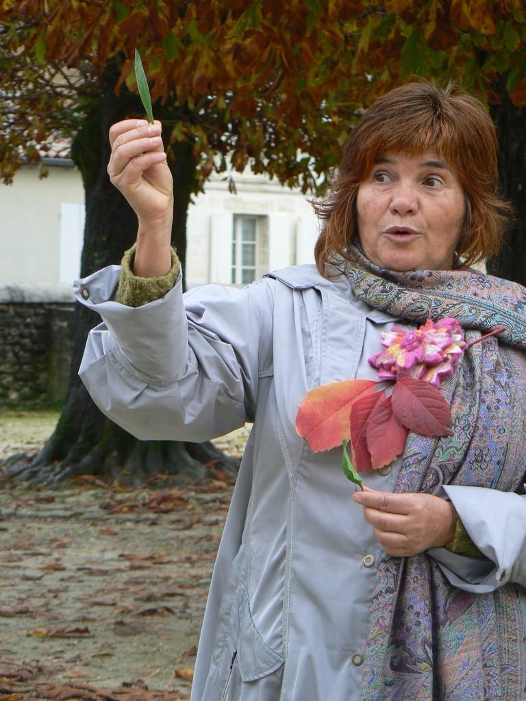Stéphanie Lafitte et le plantain, Vertheuil