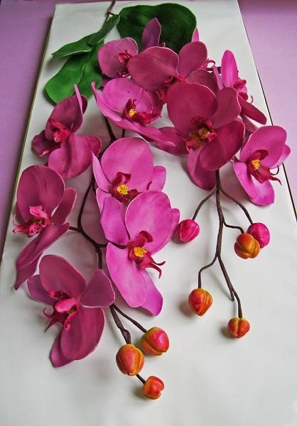 """Сахарные орхидеи """"Фаленопсис"""""""