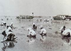 潮干狩りを楽しむ人々