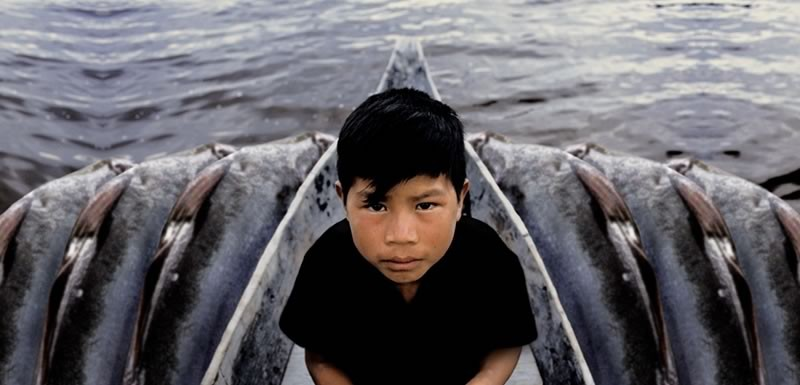 ANTONIO BRICEÑO: Iboribó. Boy-god of fishes, Pemon Culture, Venezuela. 2003