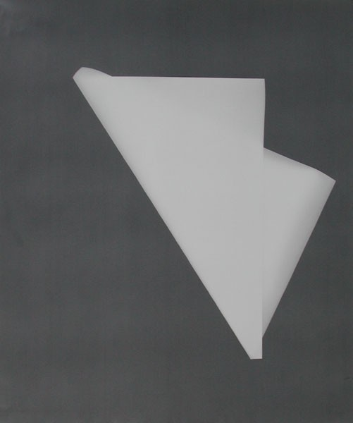 Faltblatt.Fotopapierarbeit XV-2, 2005. 60 x 50 cm