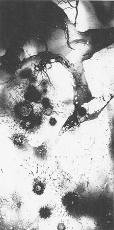 HEINZ HAJEK-HALKE. O.T, 1965. Russ-Luzidogramm. Silbergelatine-Barytpapierabzug. 28,3 x 14,4 cm. Auflage: 7