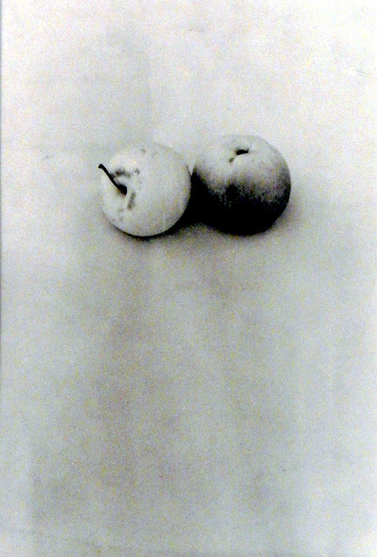 Jan Svoboda, two apples, 14 x 21 cm, Silvergelatine Print, signed, Vintage 1980
