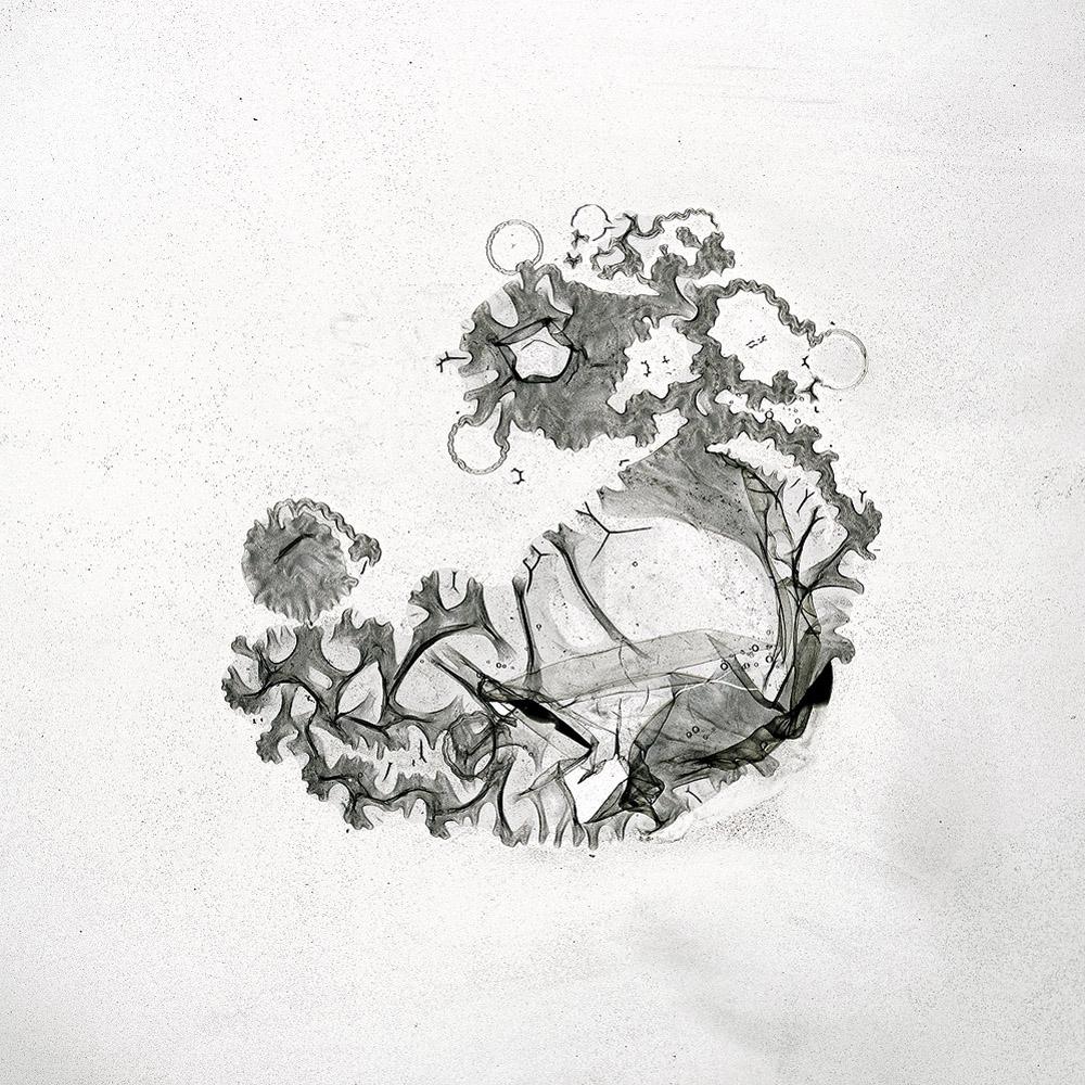 Sonne #188CA, 2010