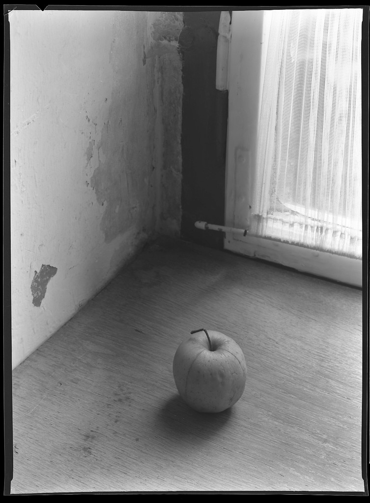 Apfel  auf dem Fensterbrett, 1984
